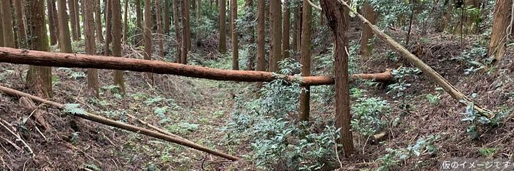 沢村城(栃木県矢板市)の見どころ・アクセスなど、お城旅行と歴史観光 ...